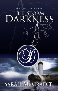 TheStormandtheDarkness_ebook(1)